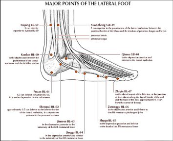 titik titik akupunktur yang berada di lateral kaki