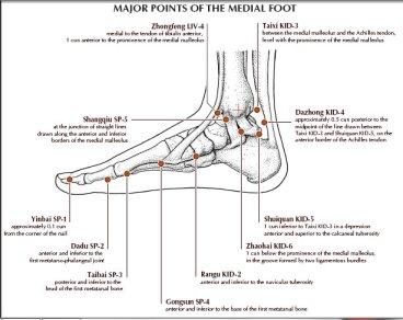 titik titik akupunktur yang berada di medial kaki