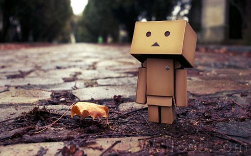 Sad danbo acupuncture
