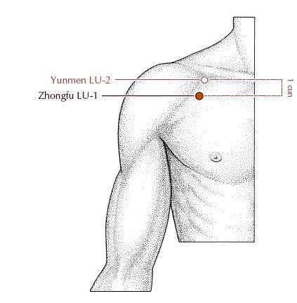 LU-1 ZhongFu